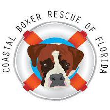 coastal-boxer-rescue